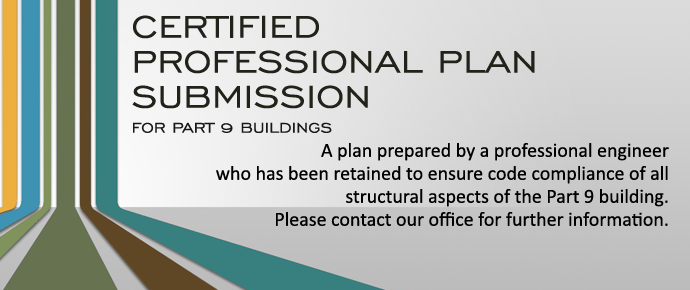 Certified Professional Plan Submission